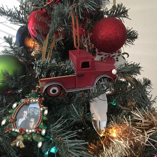 Hayley's 2018 ornament choice